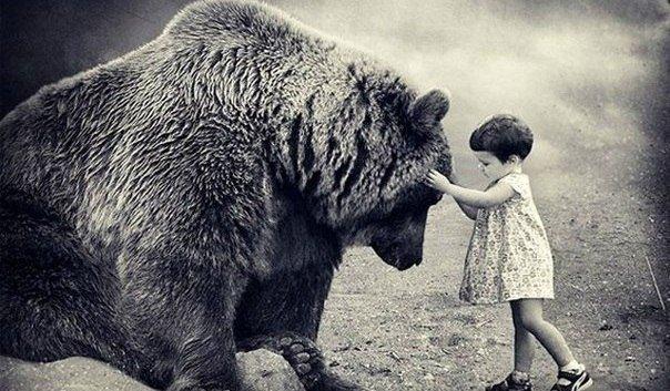 подари любовь страху